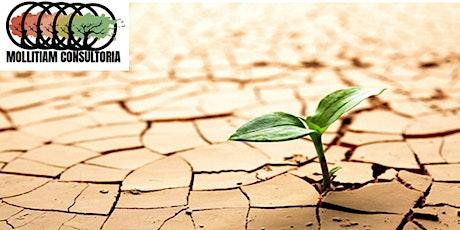 Liderança Resiliente ingressos