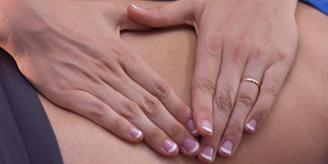 Exploring The Abdomen and Organ System: Balancing Visceral Dynamics | 20hrs CE tickets