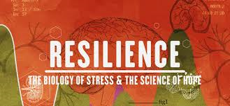 Screening of Resilience: The Biology of Stres