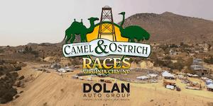 59th Annual International Camel & Ostrich Races...
