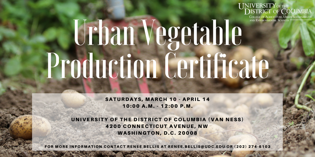 Urban Vegetable Production Certificate Course 31 Mar 2018