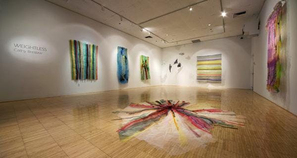From Portfolio Review to Branding with Cathy Breslaw (Textile/Installation Artist)