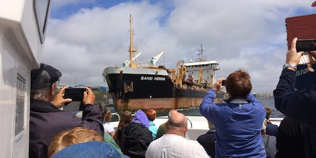 Behind-the-Scenes Boat Tour of Shoreham Port tickets