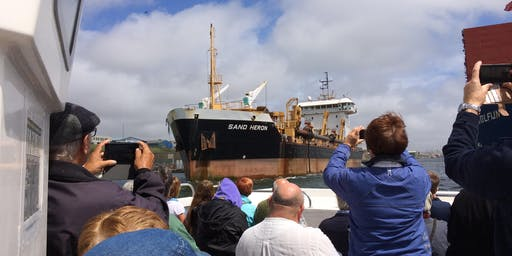 Behind-the-Scenes Boat Tour of Shoreham Port
