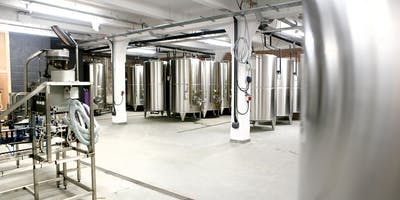 71 Brewing Brewery Tour (Ages 13+)