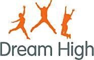 Dream High Ltd logo
