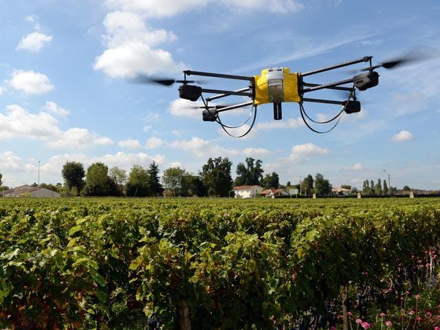 Develop a Successful Food Tech & Smart Farmin