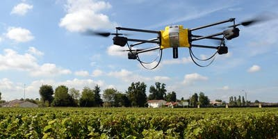 Develop a Successful Smart Farming 2.0 Tech Startu