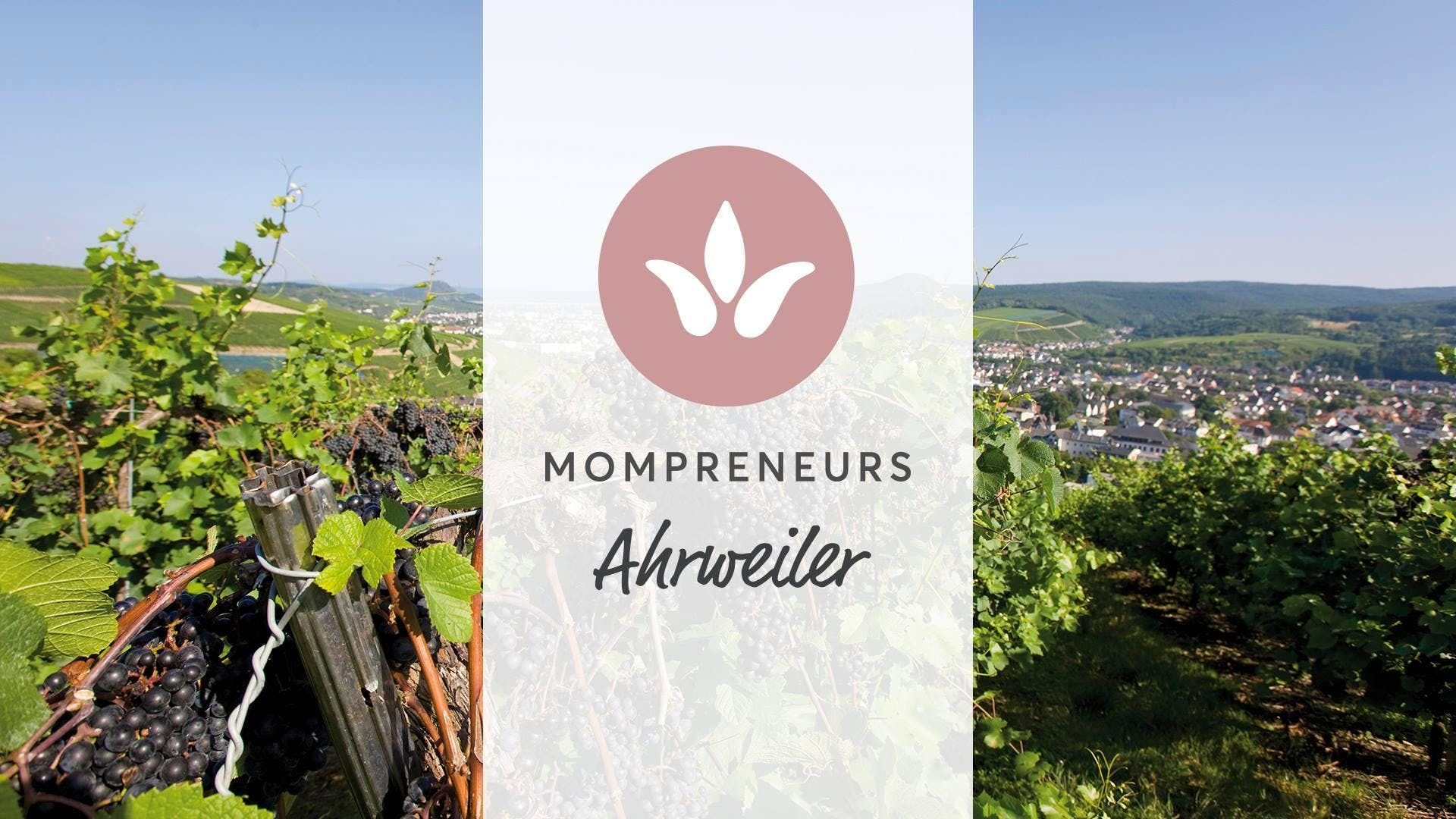 MomPreneurs Ahrweiler Meetup: Social Media ef
