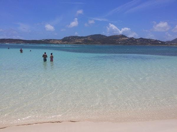 Join Charlotte Professionals On A Caribbean Cruise! Organizer Brad Evans