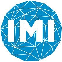 INSTITUTE FOR MATHEMATICAL INNOVATION logo
