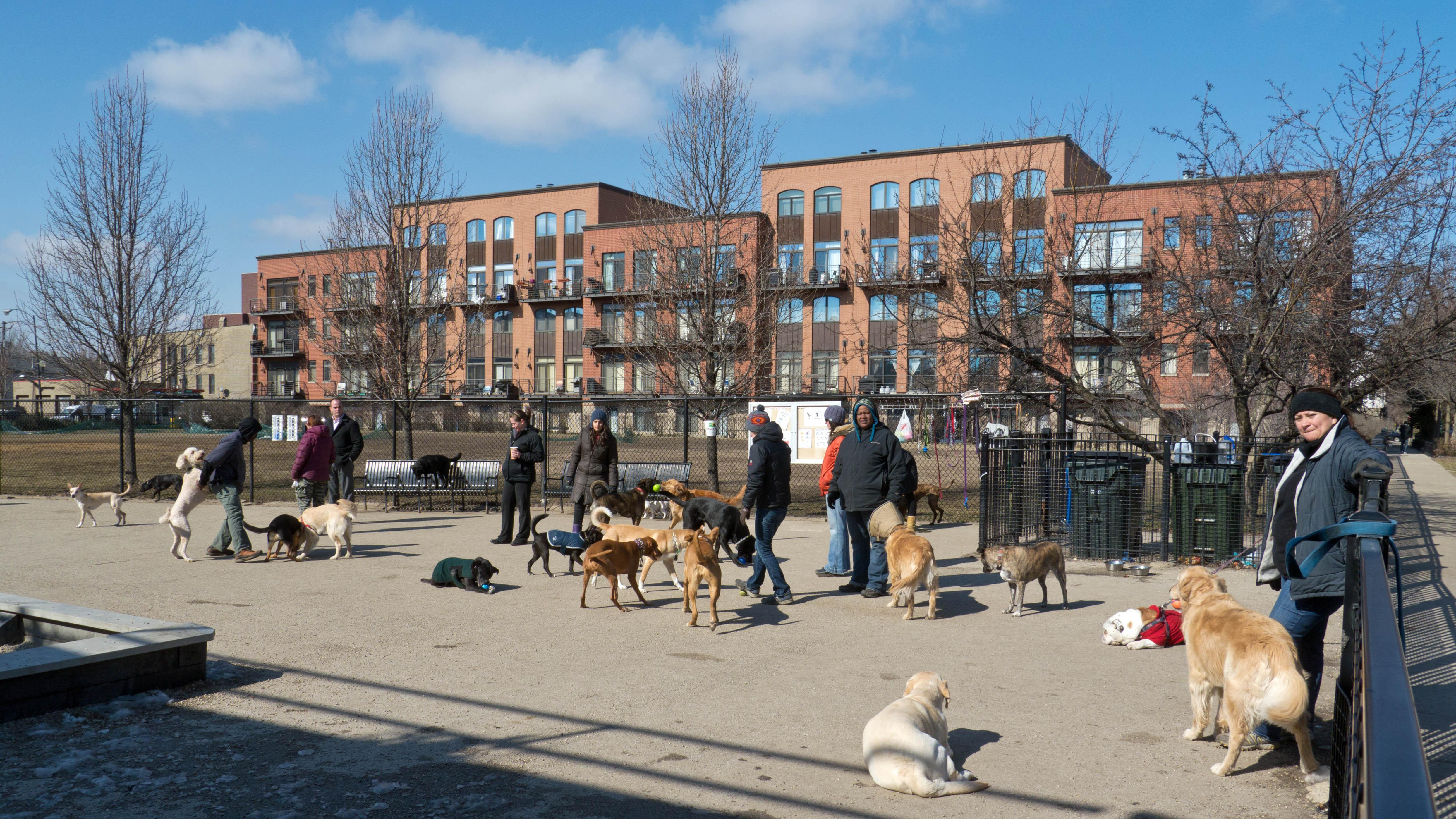 Churchill Dog Friendly Area Earth Day Clean-U