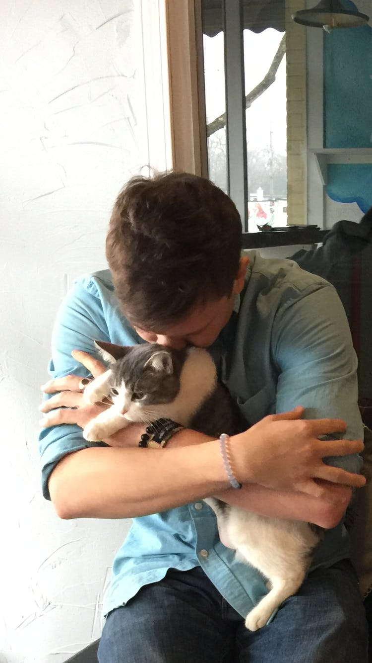 YOGA WITH CATS & YOGA MATT