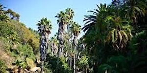 YPE Volunteer Day - Golden Gate Parks Conservancy