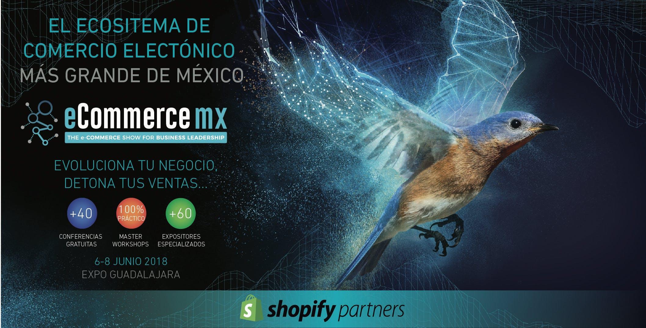 E-COMMERCE MX 2018