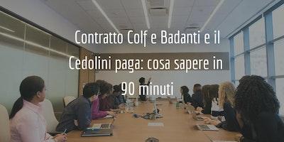 Contratto Colf e Badanti e il Cedolini paga: cosa sapere in  90 minuti