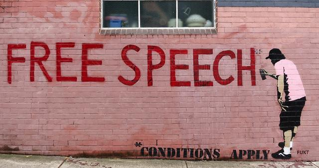 A Precarious Balance: Hate Speech and Free Ex