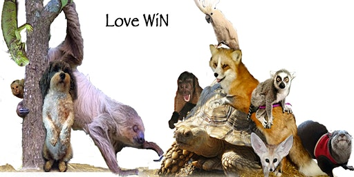 """LOVE WiN""  18 & Older Exotic Animal Encounters"