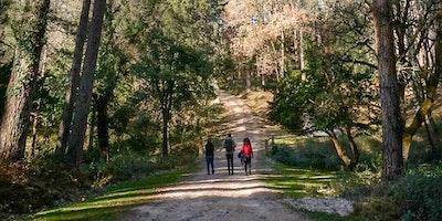 Instameet a Foresta Fiorentini - Bultei (SS)