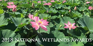 2018 National Wetlands Awards