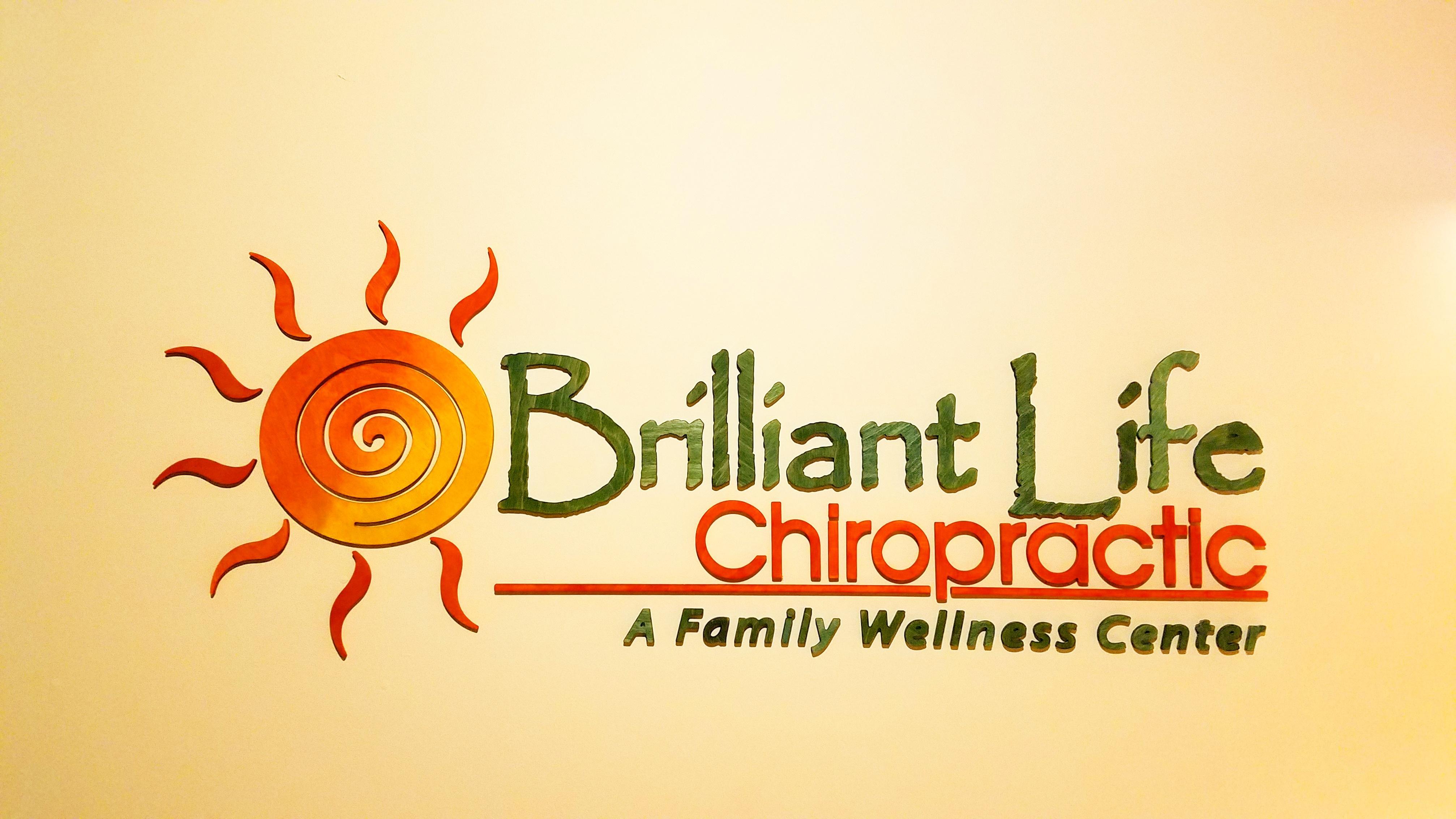 Brilliant Life Playshop - Heal your Guts!