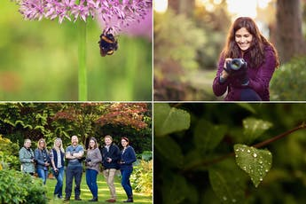 Beginner's DSLR Photography Workshop - Get Off AUTO tickets