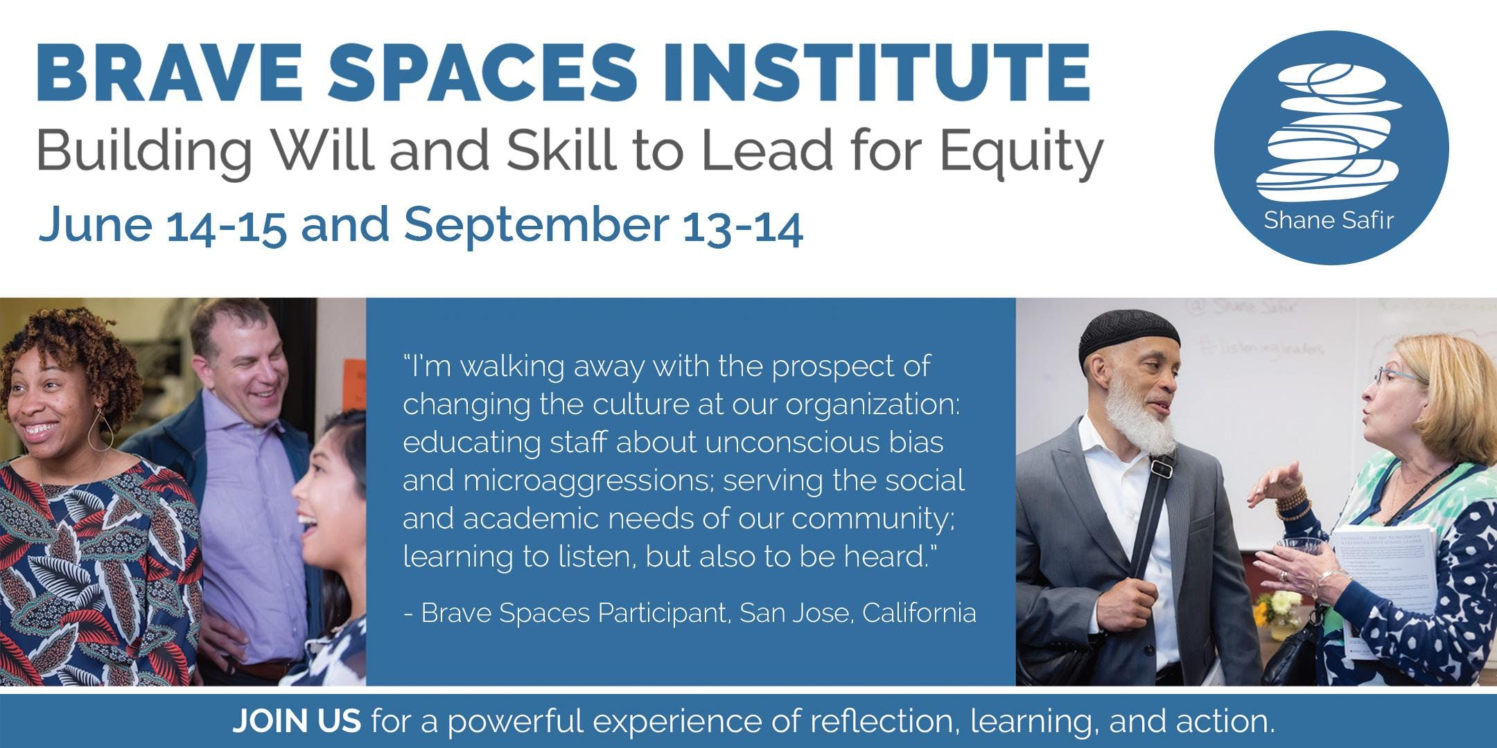 BRAVE SPACES INSTITUTE: Building Will and Skill to Lead for Equity