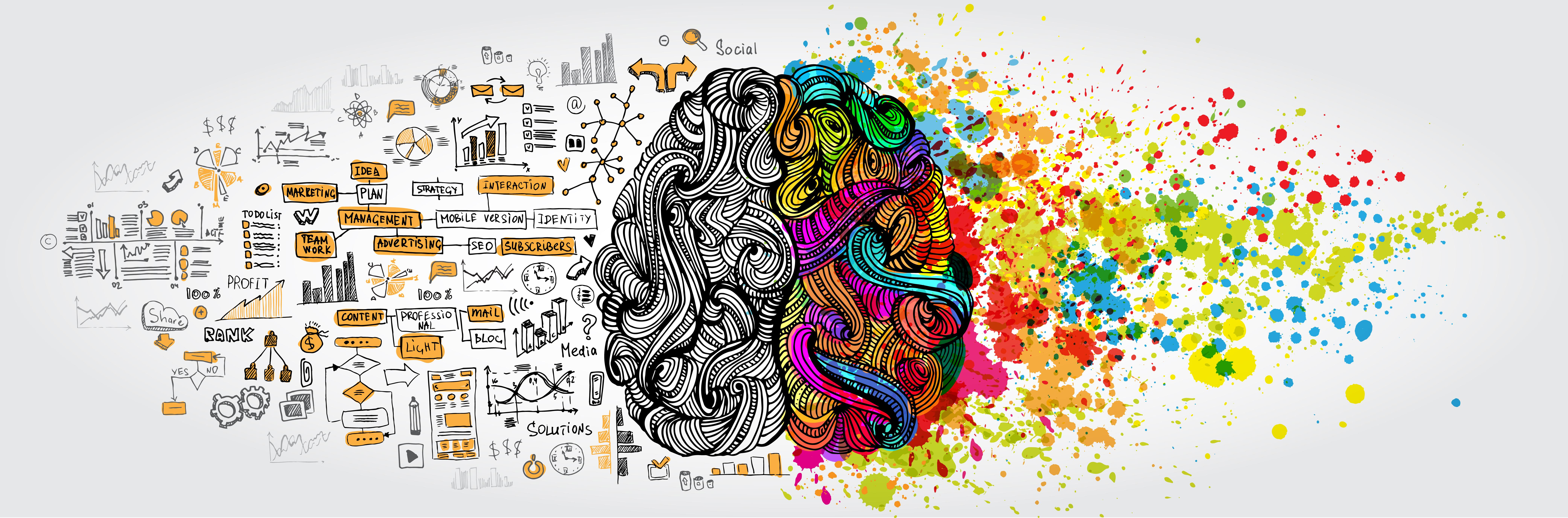 Creativity - The Wow Factor !