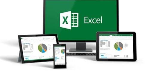 Microsoft/MS Excel Training