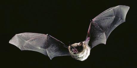 Bats in the Barn tickets