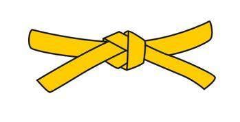 Lean Six Sigma Yellow Belt Level (1 Day)