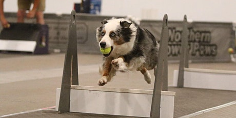 Training Class - Flyball tickets