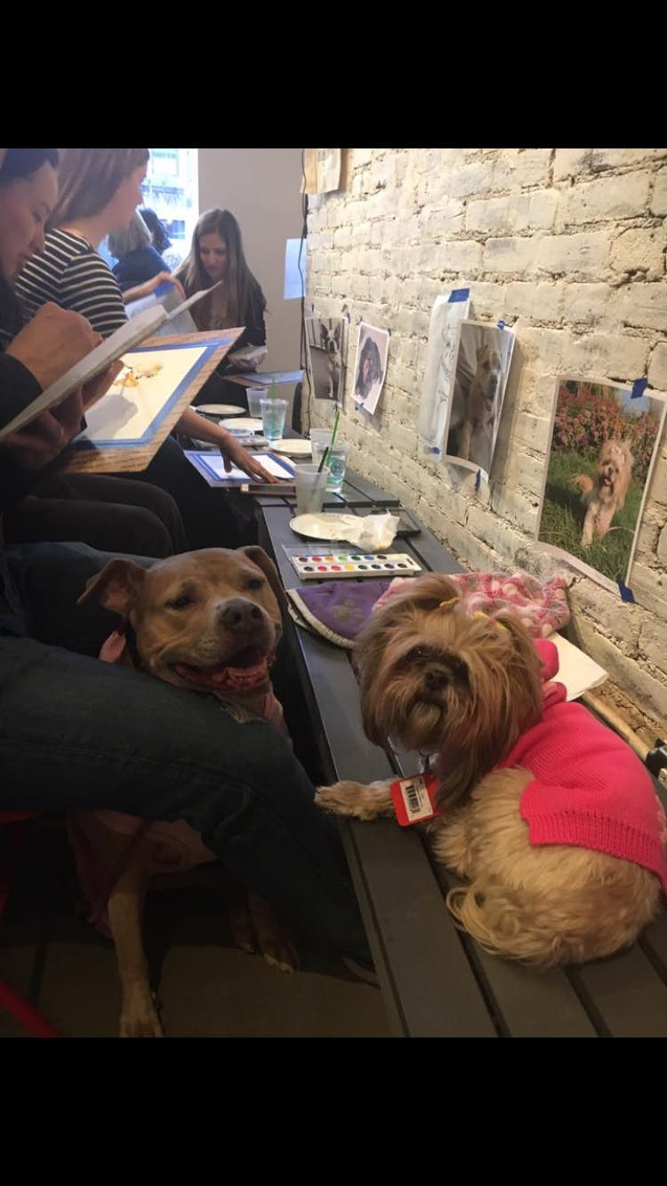 Paint Your Own Pet Party- Friday Funday with our Dogs
