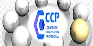 TALLER ONLINE DE LIQUIDACIONES ANUALES 2017 (CER)