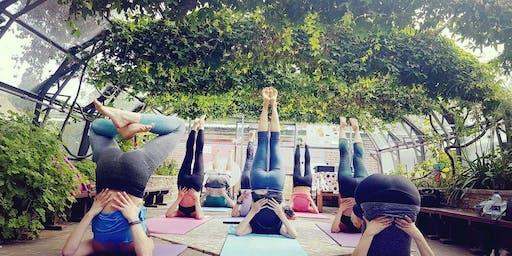 Glasshouse Yoga