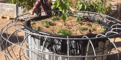Wire Pot Wicking Bed - Braybrook Commons Community Garden
