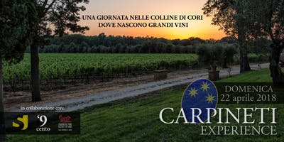 Carpineti Experience