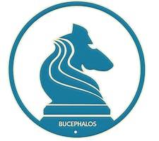 Bucephalos Business Association logo