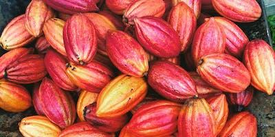 Cacao Farm to Chocolate Factory Tour