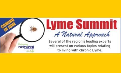 Lyme Summit