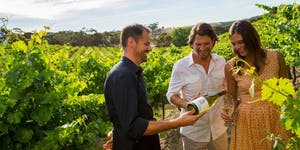 Mexico Wine Three Day, Two Nights Baja Gourmet and...