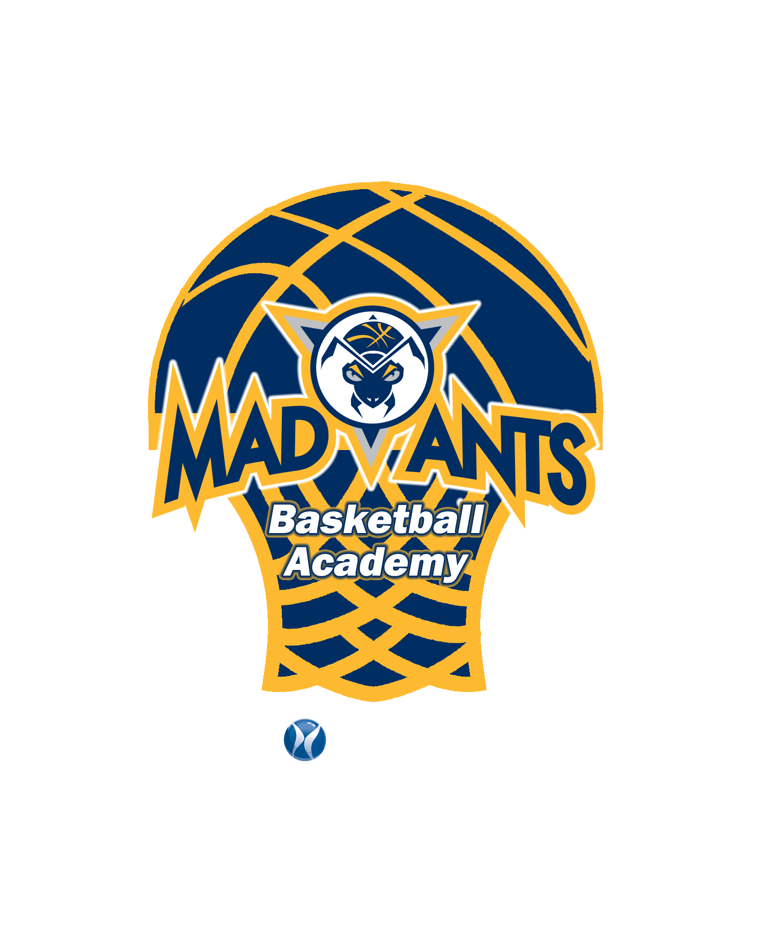 Mad Ants Basketball Academy Summer Camp with