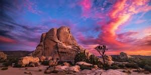Sarasa Tantra: Joshua Tree Retreat
