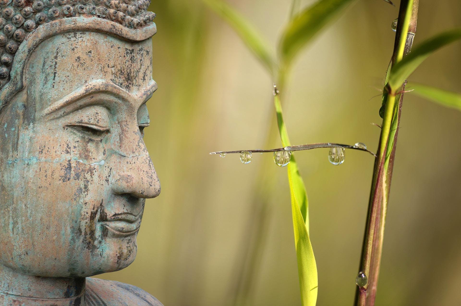 Méditation avancée pour un bien-être optimal