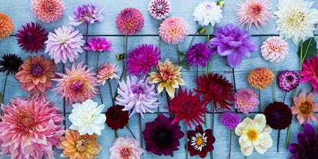 Dahlias for the cut flower garden tickets