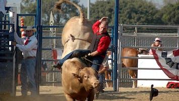 Broncs & Bulls Rodeo