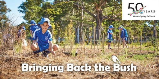 Bringing Back the Bush Schools Planting Program