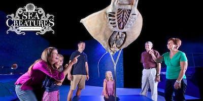 Sea Creatures Tour Exhibition Scotland