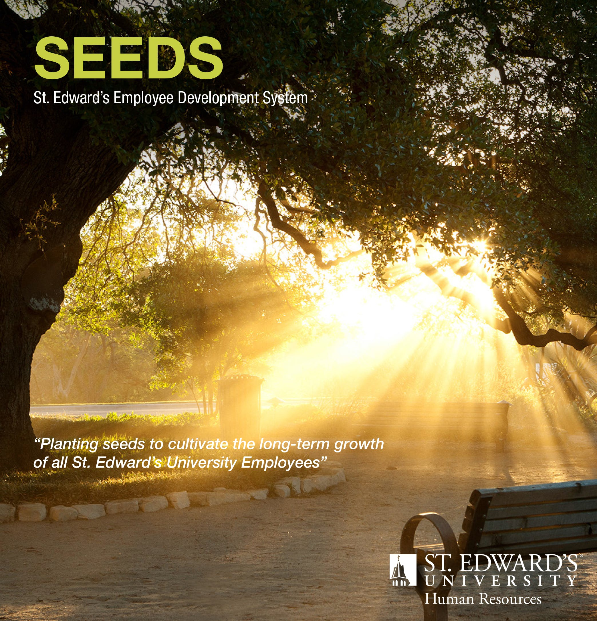 SEEDS Info Session