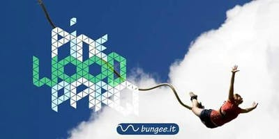 Bungee IN the PARQ - A jump for life